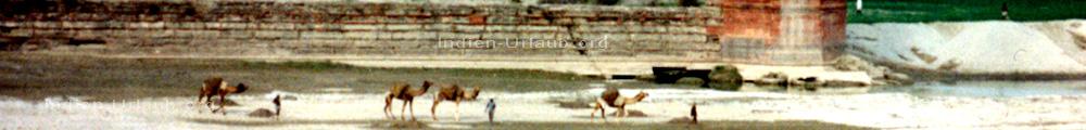 Uttar Pradesh Rundreisen und hier auf dem Bild eine Kamelkarawane neben dem heiligen Fluss Yanuma in der Naehe vom Taj Mahal.
